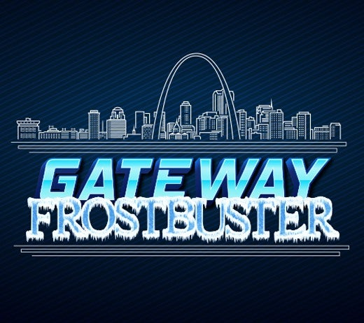 More Info for LUCAS OIL FROSTBUSTER