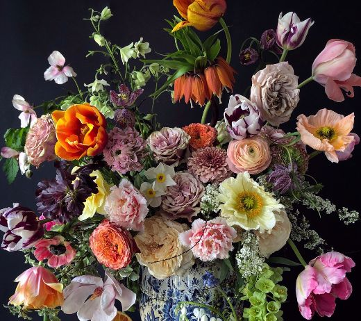 More Info for SUGARFLOWERS AND THE ARTISTRY OF THE DUTCH OLD MASTERS