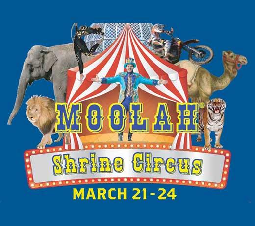 moolah2019_thumbnail.jpg