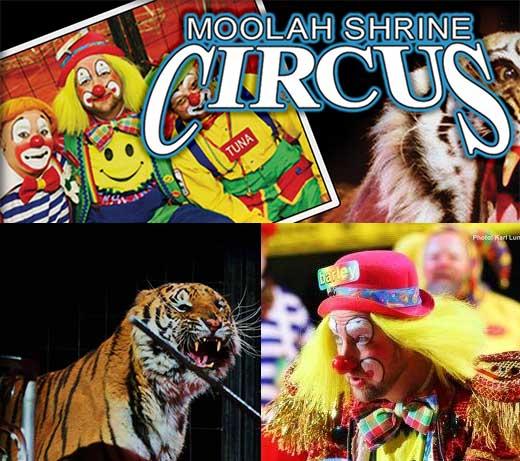 moolah_thumbnail.jpg