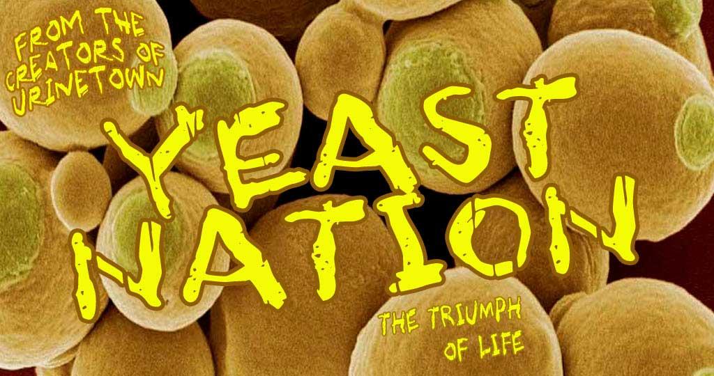 yeastnation_spotlight.jpg